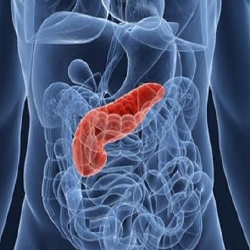 МРТ поджелудочной железы: его проведение и подготовка к процедуре. МРТ поджелудочной с контрастом.
